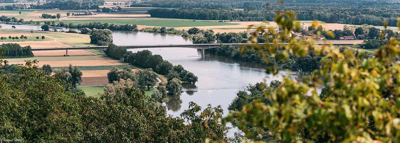 Donau bei Bogen